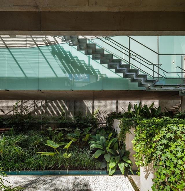 Bạn thấy đây là một loại cầu thang nữa nằm trong một phần khác của khu vườn dẫn đến các tầng trên của ngôi nhà. Bạn cũng có thể thấy rất nhiều loại thực vật khác nhau được trồng ngay tại bên ngoài.