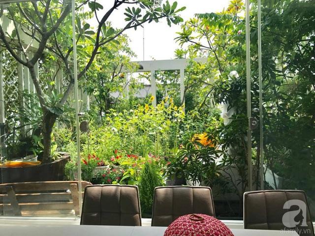 Chị tận dụng ban công, sân thượng để phủ xanh cây cỏ.