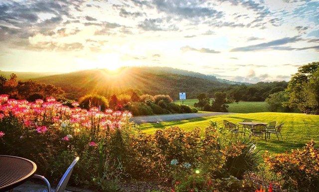 Phía sau trang trại là vườn hoa, tiếp giáp với đồi thoải, núi non cùng cảnh sắc thiên nhiên tuyệt vời của vùng này.