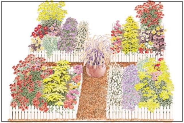 7. Tạo 4 luống đơn giản để trồng những loại cây, hoa mà mình thích. Đóng cọc rào xung quanh vừa để quy hoạch luống vừa tạo điểm nhấn cho sân vườn.