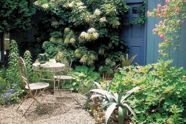 7. Đặt bộ bàn ghế có kiểu dáng thanh mảnh ở một góc sân tạo vẻ đẹp duyên dáng cho sân vườn vừa là nơi yên tĩnh để đọc sách, thư giãn.