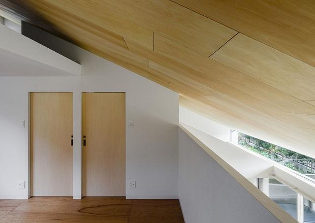 Dốc bằng gỗ của mái nhà làm tăng thêm tính độc đáo và thú vị.