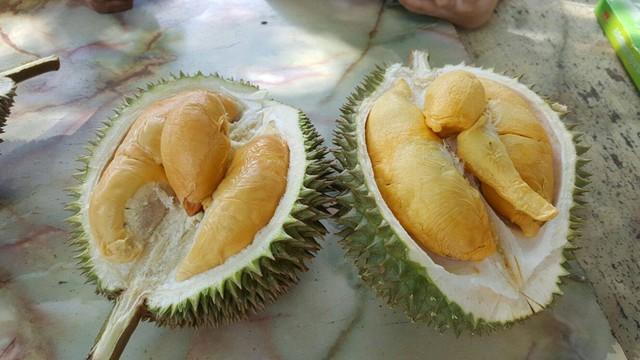 Sầu riêng: Món quả đặc trưng của miền Nam Việt Nam này có vị ngon hấp dẫn, nhưng mùi thì không phải ai cũng ngửi được. Ảnh: Eatbook.