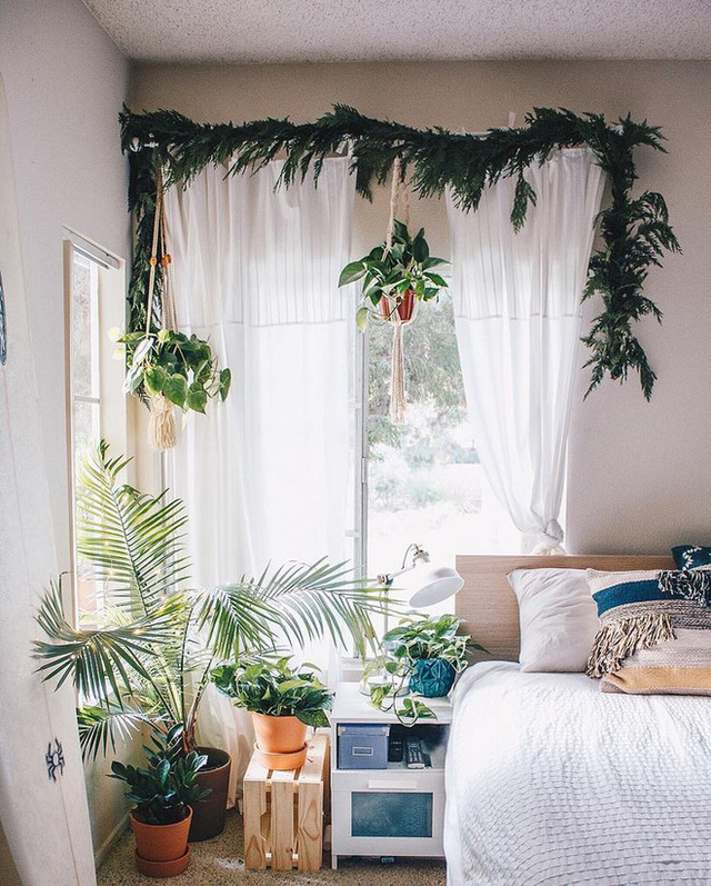 7. Chất liệu voan mỏng luôn là điều kì diệu để khung cửa sổ đẹp và mềm mại hơn. Nhất là khi kết hợp cùng với những chậu cây treo thế này, ngôi nhà của bạn lại càng đẹp hơn hẳn.