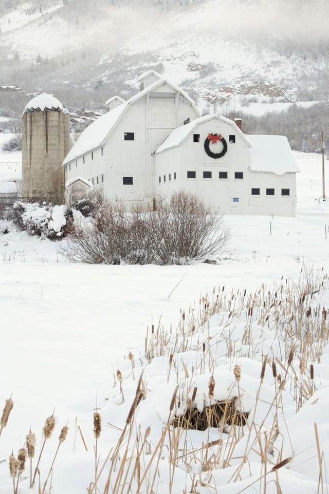 Nằm trên sườn núi, ngôi nhà gỗ phủ đầy tuyết trắng ở thành phố Park, Utah (Mỹ) đơn sơ nhưng từ xa đã có thể thấy không khí Noel nhờ chiếc vòng nguyệt quế to được treo ngay trước nhà.