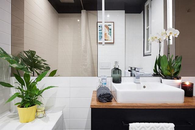 Tường gương và cây xanh giúp không gian nhỏ trong đẹp mắt hơn hẳn.