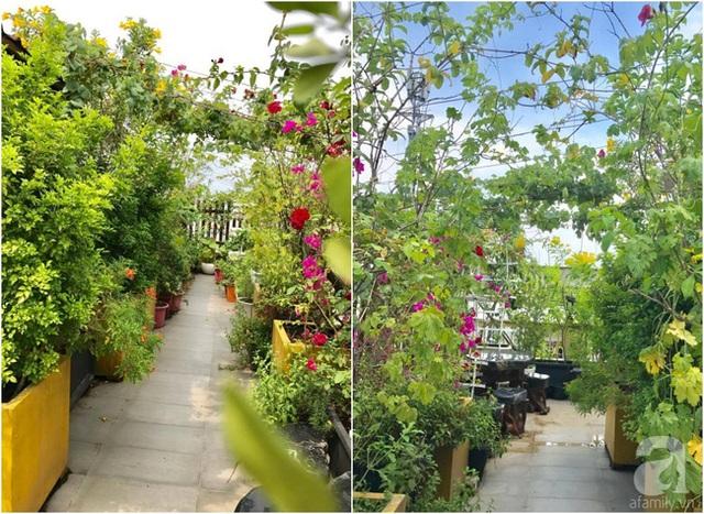 Góc sân thượng um tùm cây cối.