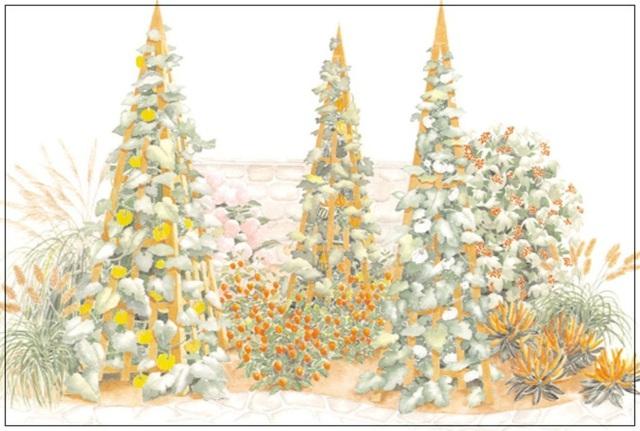 8. Với một mảnh đất siêu nhỏ, bạn có thể sử dụng cọc rào đóng thẳng lên để trồng các loại cây leo tạo khu vườn xanh tươi, mát mắt.