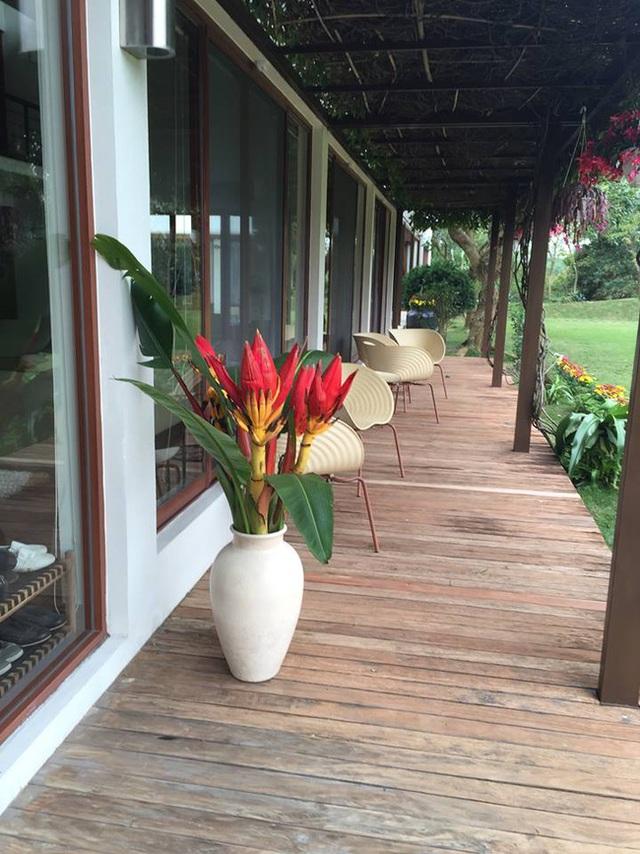 Bình hoa chuối rừng tô điểm sắc màu cho hiên nhà.