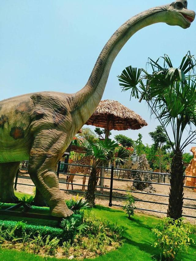 Các mô hình khủng long, king kong cũng thú vị không kém