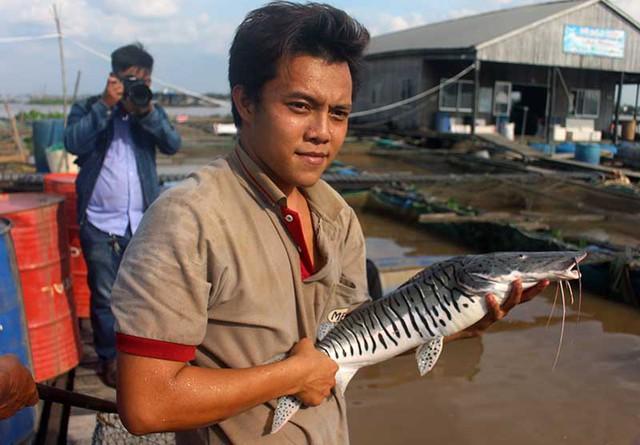 Ngoài ra, hiện ông Bon còn đang sở hữu các loại cá quý hiếm khác như Trà Sóc, Trê Cọp.