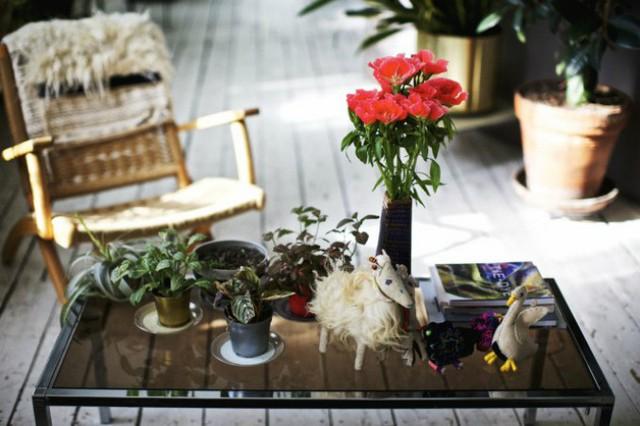 Thú trưng bày cây trong nhà với Shabd giống như chơi đồ hàng, tuy không tốn kém nhưng cần sự kiên trì, tỉ mỉ.