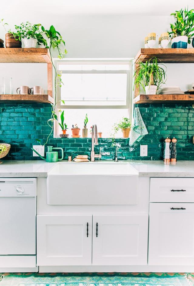 Tường bếp với tone màu xanh lục ngọc bảo làm tương phản với tone màu xanh lá của những chậu cây khiến cho góc bếp trở nên thật cuốn hút.