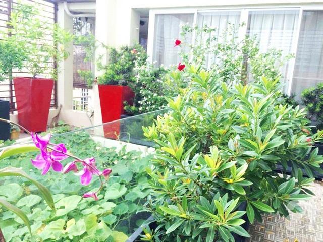 Nơi mọi người trong gia đình cùng nhau làm vườn.