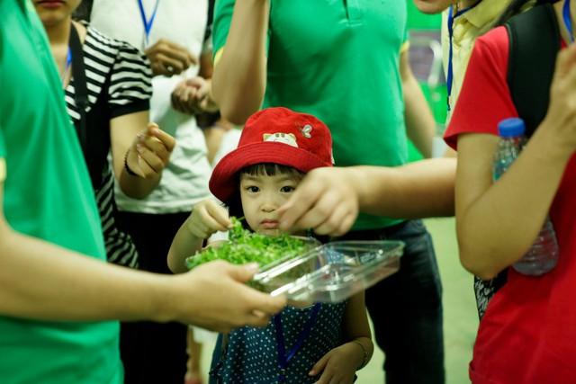 Các bạn nhỏ háo hức ăn thử rau mầm tươi ngon ngay khi vừa thu hoạch