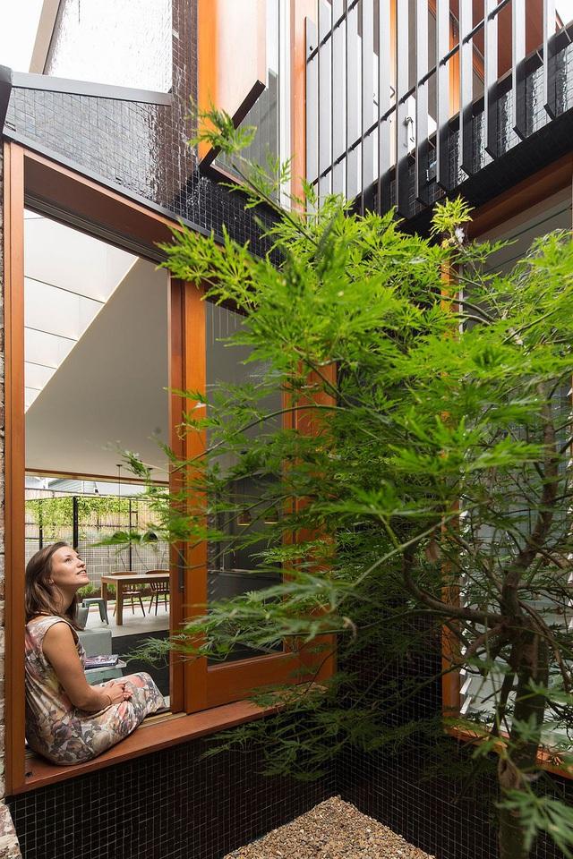 Việc khéo léo đặt một cây phong Nhật trong sân gần đặt khu vực phòng khách là tính toán cho sự thư giãn tối đa.