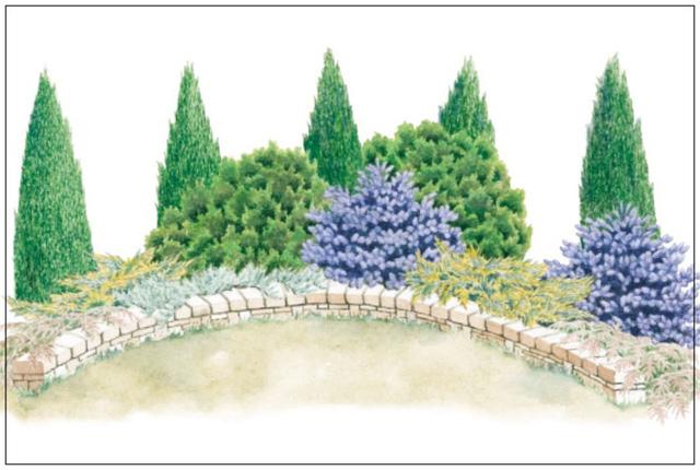 9. Vườn nhỏ vẫn có thể xinh đẹp nhờ cách tạo vòm để trồng cây cảnh.