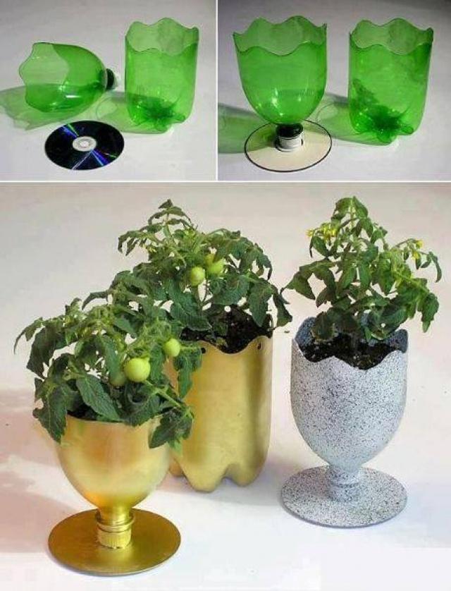 Một chiếc chậu cây nhỏ xinh xắn có thể được tạo ra từ những chai nhựa cũ. Những bông hoa, chậu cây xinh xắn sẽ khiến ngôi nhà của bạn luôn tươi mới, trong lành.