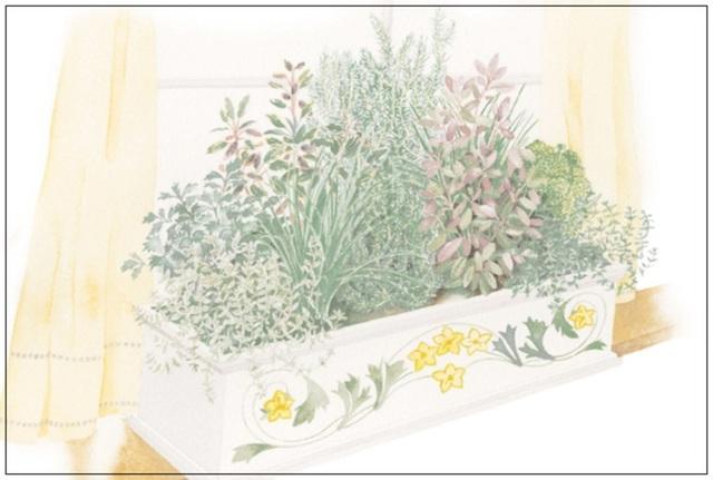 10. Phía trước nhà hay bệ ngoài cửa sổ, bạn có thể tạo hộp trồng cây gia vị hay rau, hoa tuỳ ý.