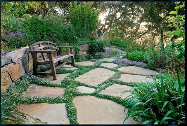 10. Mảnh sân đá quen thuộc được trồng cỏ hay các loài hoa bé li ti tạo đường viền ấn tượng.