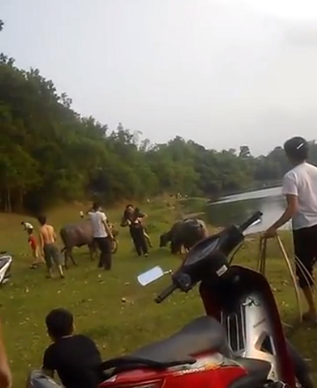 Khúc sông nơi 3 học sinh gặp nạn. Ảnh cắt từ clip.