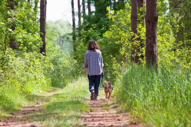 Đi dạo là cách giúp bạn cảm thấy hạnh phúc hơn