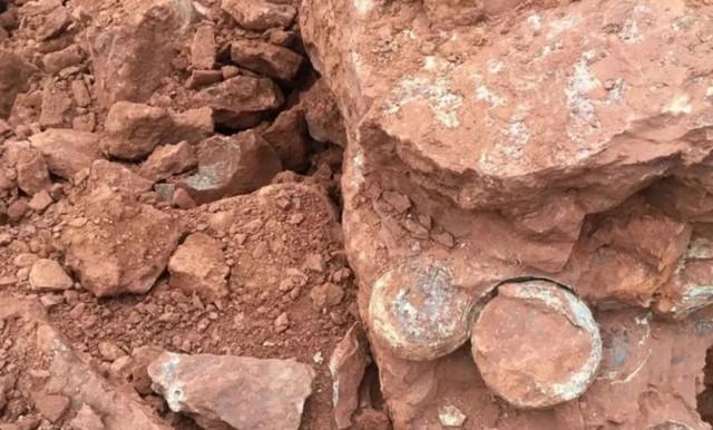 Trứng khủng long hóa thạch được phát hiện tại một công trường xây dựng ở Trung Quốc