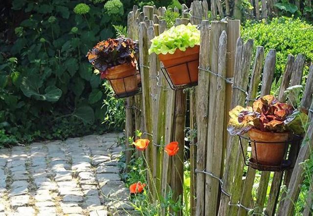 Cậu tự tay biến nơi này thành thiên đường bằng các hàng rào gỗ, đèn treo và những chậu hoa.