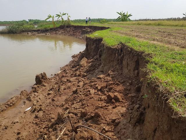 Hàng trăm mét đất canh tác của người dân biến thành sông vì cát tặc. Ảnh: Diễm Hằng