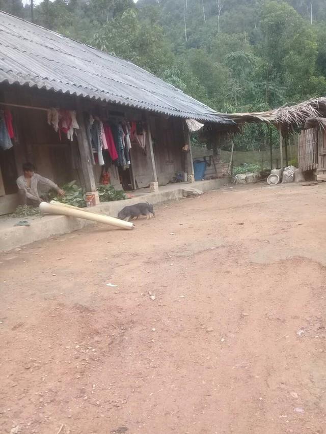 Căn nhà tuềnh toàng của vợ chồng chị Ton
