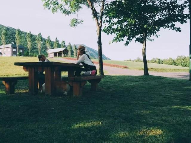 Góc thư giãn dịu dàng bóng mát từ cây cổ thụ và thảm cỏ xanh.