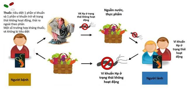 Vi khuẩn Hp có thể lây nhiễm chéo trong gia đình khiến người bệnh dễ bị tái nhiễm