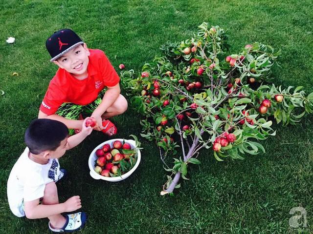 Hai con trai của anh cũng rất thích khu vườn của bố.