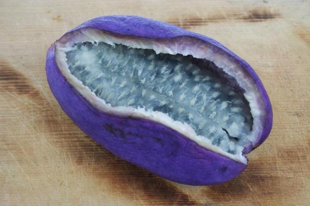 Gần đây, người tiêu dùng xôn xao trước một loại quả có tên là Akebi hay nho tím kỳ lạ của Nhật Bản bởi giá của chúng gấp hàng chục lần so với giống nho Bình Thuận hiện nay.