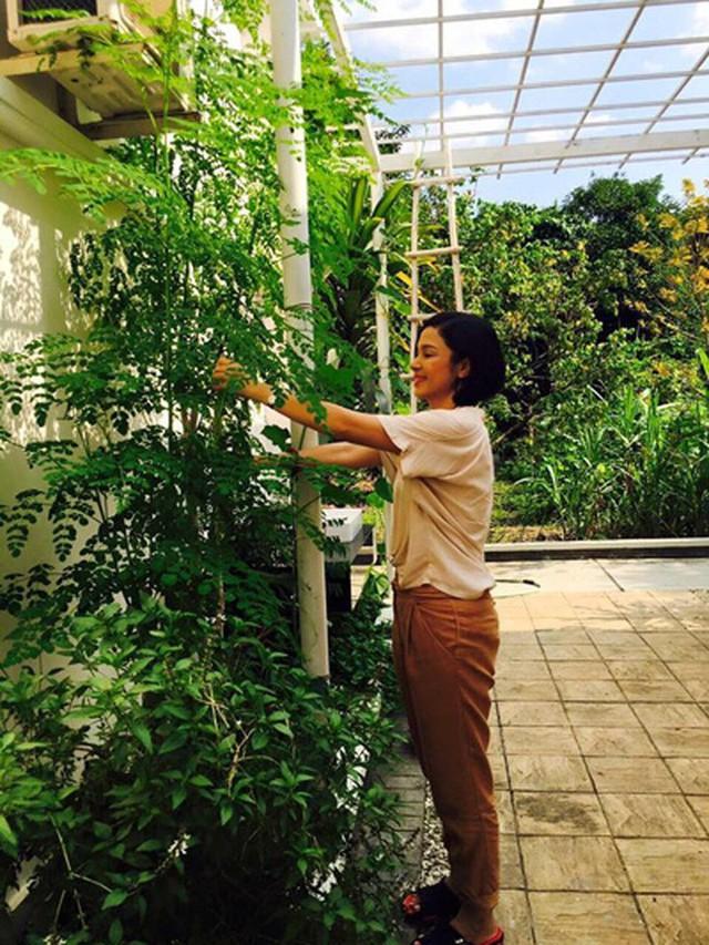Việt Trinh hào hứng với việc trang trí, decor nhà.