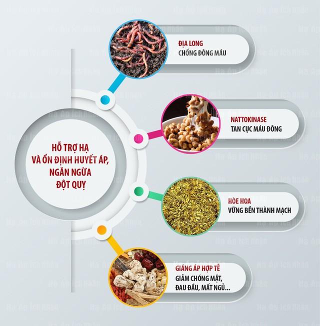 Các dược liệu Đông y giúp ngủ ngon và hạ huyết áp hiệu quả cho bệnh cao huyết áp