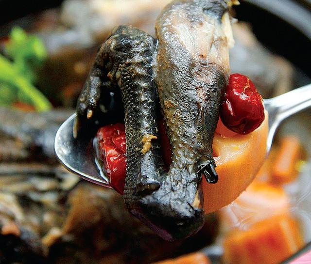 """Gà đen (gà ác): Mỗi con gà đen Sa Pa chỉ nặng khoảng hơn một kg, da màu đen, thịt săn chắc và rất thơm ngon do chăn thả tự nhiên. Gà đen là đặc sản nổi tiếng của Sa Pa, có thể chế biến thành nhiều món ăn như rán, xào, hấp, luộc. Đặc biệt, gà đen nướng mật ong dưới than hồng và chấm muối tiêu chanh, lá bạc hà là món ăn """"đỉnh"""" nhất. Ảnh: @chichii919, Chuyện du lịch."""