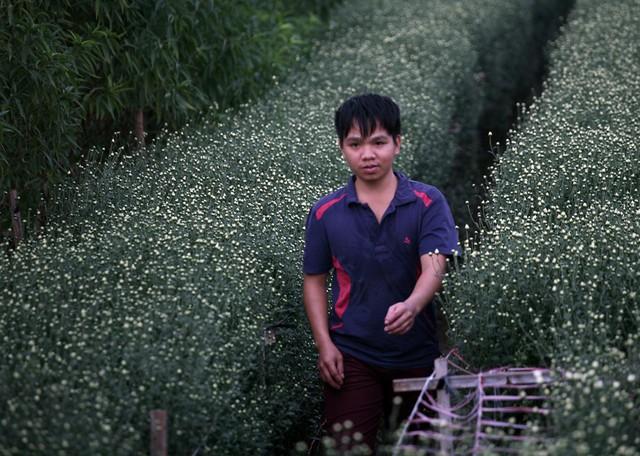 Những nam thanh niên làm chủ vườn cúc cũng đang tất bật chuẩn bị đón tiếp khách đến chụp ảnh.