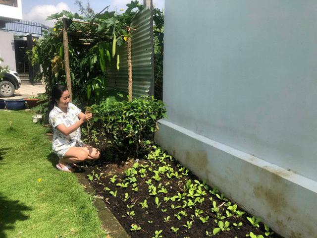 Ốc Thanh Vân cũng chăm chỉ làm vườn khi rảnh rỗi.