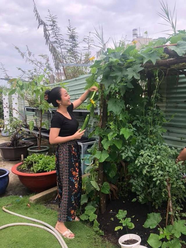 Khu vườn được chồng Thanh Vân trồng cây gì cũng xanh tốt.