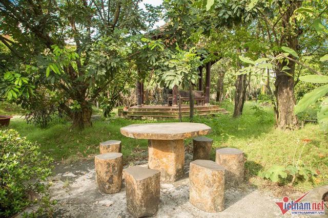 Cô đặt bộ bàn ghế đá giữa vườn để có dịp ngồi ăn dưới những tán cây.