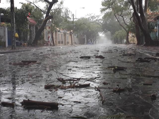 Gió mạnh liên hồi khiến cành cây gãy rơi trên đường tại thị trấn Cần Thạnh (H.Cần Giờ) . Ảnh: Thanh Niên
