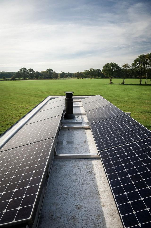 Các tấm pin năng lượng mặt trời được thiết kế bởi Ark Shelter.