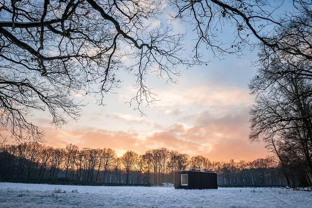 Cabin rất tiện lợi, có thể di chuyển được và thân thiện với môi trường.