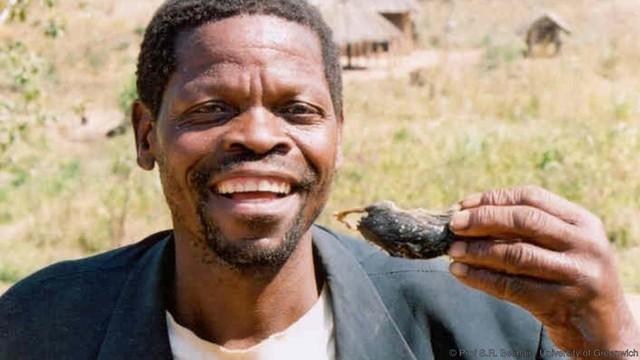 Nhiều người đánh giá thịt chuột là vua của các loại thịt. Ảnh: Prof S.R. Belmain, University of Greenwich.