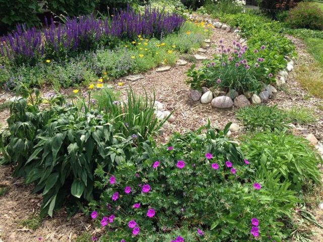 """Khi chuyển về đây, chị thấy được giấc mơ của tương lai, một khu vườn với đủ loại rau quả sạch, các loại hoa mà chị yêu thích. Vì thế, chị luôn dành phần lớn thời gian trong ngày để trồng các loại rau xanh hàng ngày, các loại rau gia vị. """"Khu rừng"""" thực phẩm sạch bao gồm hoa trái đã được hiện ra trước mắt chỉ trong vài năm."""