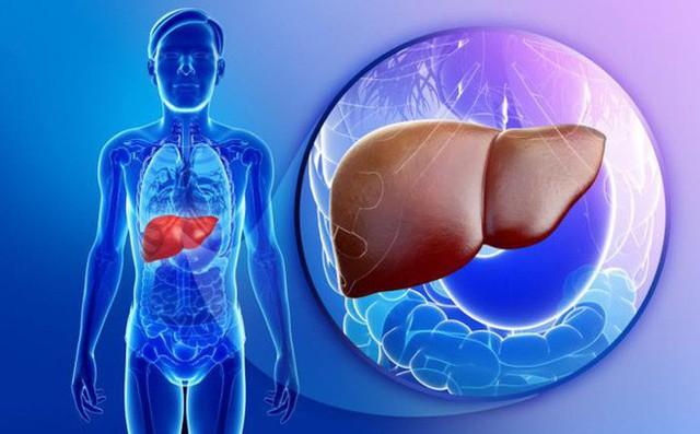 Thải độc cho gan đang được nhiều người lựa chọn