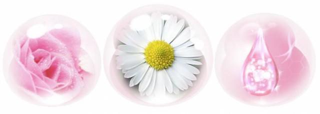 Collagen, tinh chất hoa hồng, vitamin E cùng các thảo dược như Lô hội hay Cúc la mã là những thành phần có tác dụng chăm sóc dịu nhẹ và làm đẹp vượt trội cho da vùng kín.