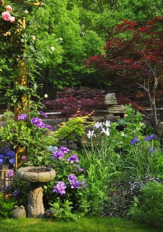 Những góc nhỏ đẹp như những khu vườn ở phương Tây.