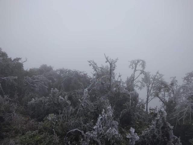 Nhiệt độ xuống chỉ còn âm 0,3 độ C khiến băng giá xuất hiện ở Mẫu Sơn.